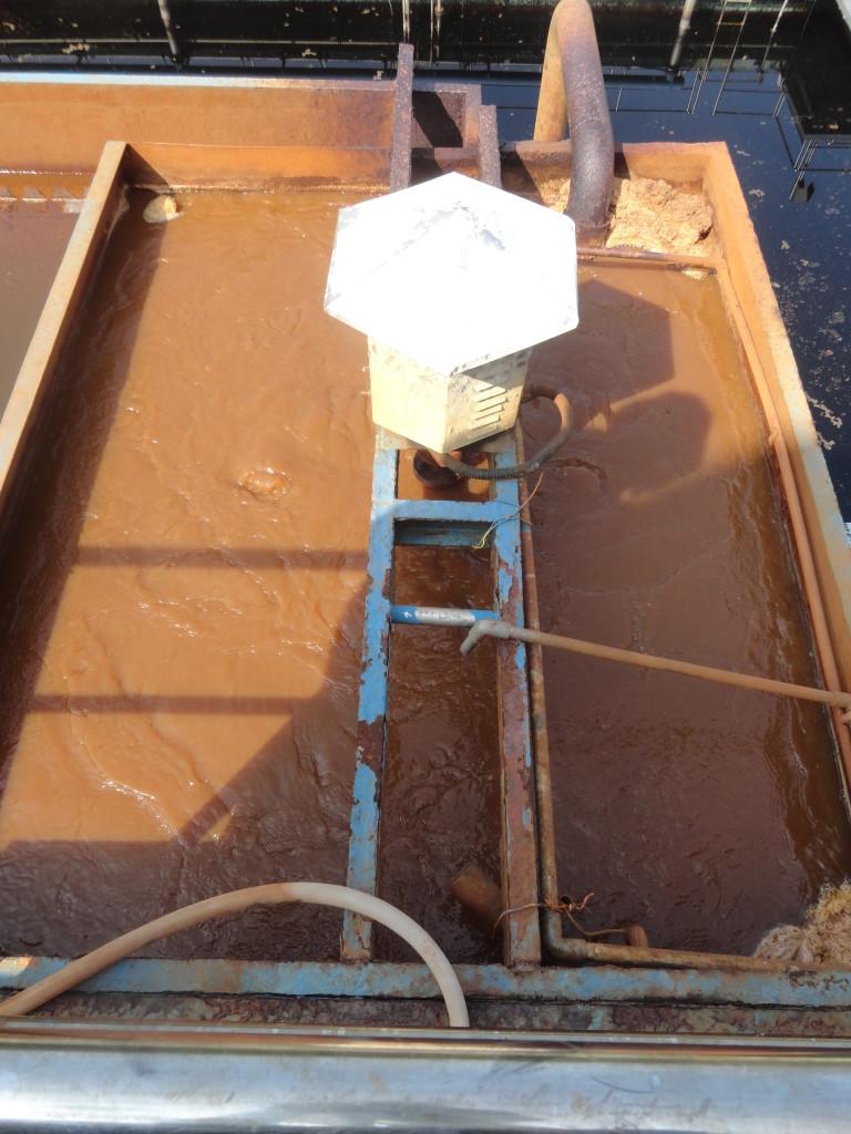 Công ty cung cấp bùn vi sinh chất lượng tốt nhất ở Bình Dương