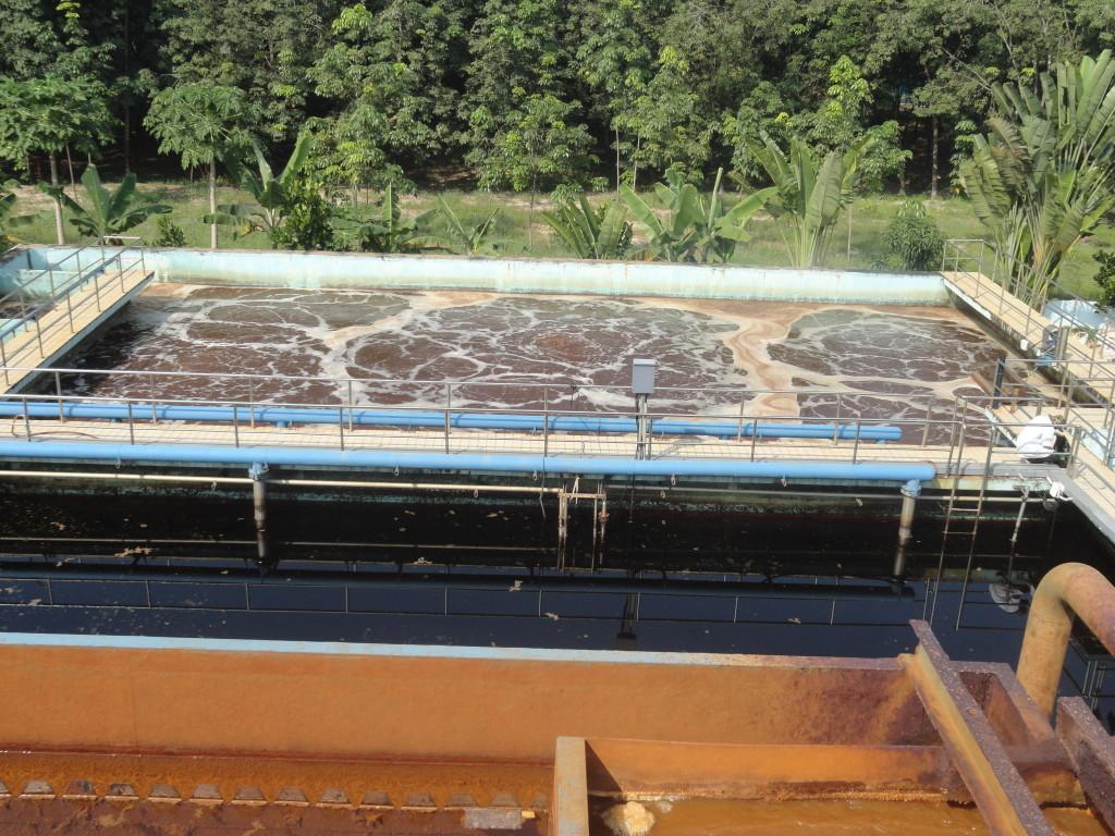 Các cơ sở chăn nuôi heo tại Cần Thơ đã mạnh dạn đầu tư xây dựng hệ thống xử lý khí sinh học biogas để tạo nguồn khí đốt, chạy máy phát điện….Tuy nhiên nước thải sau xử lý khí sinh học biogas vẫn còn chứa nhiều thành phần ô nhiễm nghiêm trọng. Nước thải sau Biogas có màu vàng tơi và mùi khó chịu, khi xả nguồn nước thải sau biogas ra các kênh rạch đã làm ô nhiễm nguồn kênh rạch rất trầm trọng (kênh đen và có mùi hôi thối). Vì những lý do đó rất cần thiết phải xử lý nước thải chăn nuôi heo tại Cần Thơ.