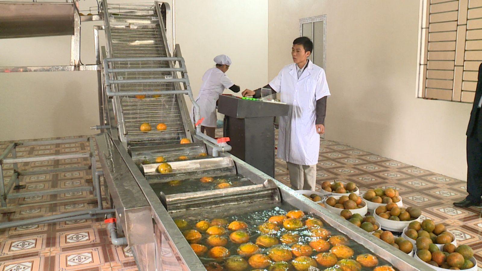 Xử lý nước thải nhà máy sản xuất nước ép trái cây