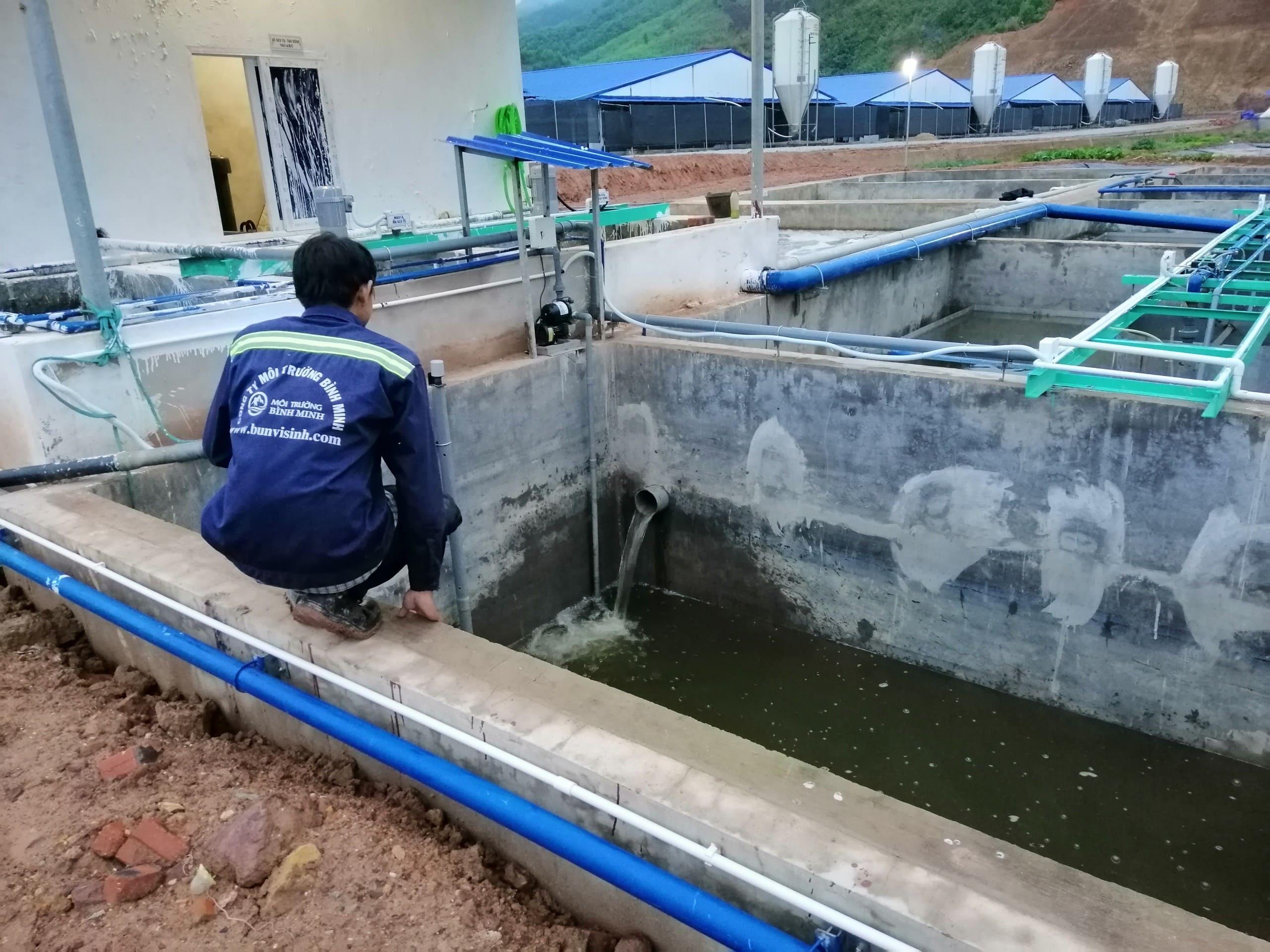 xử lý nước thải chăn nuôi heo tại Đồng Nai