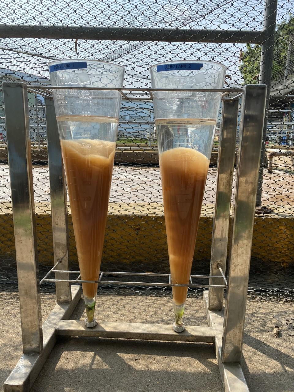 Cung cấp bùn vi sinh tại Bắc Ninh Bắc Giang - Kiểm tra bùn vi sinh sau khi cung cấp