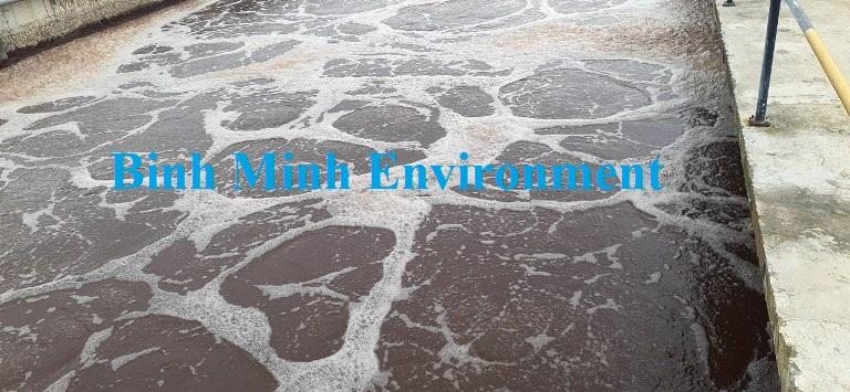 Cung cấp bùn vi sinh hoạt tính - Bể vi sinh hiếu khí