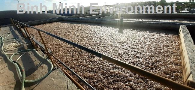 Hướng dẫn nuôi cấy bùn vi sinh hoạt tính - Bọt vi sinh chết nổi kín mặt bể