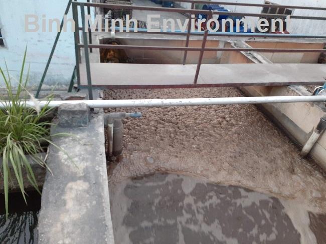 Hướng dẫn nuôi cấy bùn vi sinh hoạt tính - Bọt vi sinh nổi vàng, khó tan