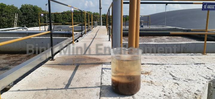 Bùn vi sinh sau khi cung cấp