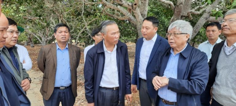 Hình 1. Xử lý nước thải chăn nuôi tại Gia Lai - thứ trưởng Phùng Đức Tiến khảo sát thực tế về đầu tư xây dựng các dự án tại Gia Lai