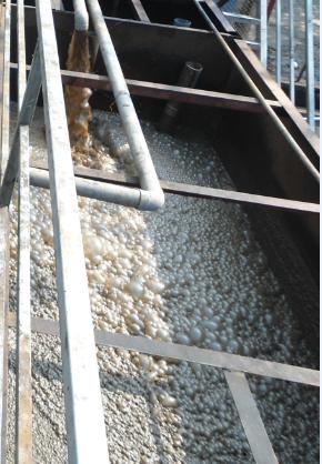 Xử lý nước thải sinh hoạt bằng công nghệ sinh học hiếu khí MBBR