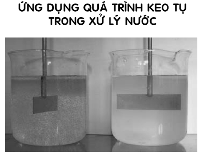he thong xu ly nuoc thai ung-dung-qua-trinh-keo-tu