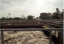 Công ty nuôi cấy vi sinh môi trường - Môi trường Bình Minh