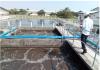 Sự cố khi vận hành hệ thống xử lý nước thải (Bùn vi sinh hoạt tính)