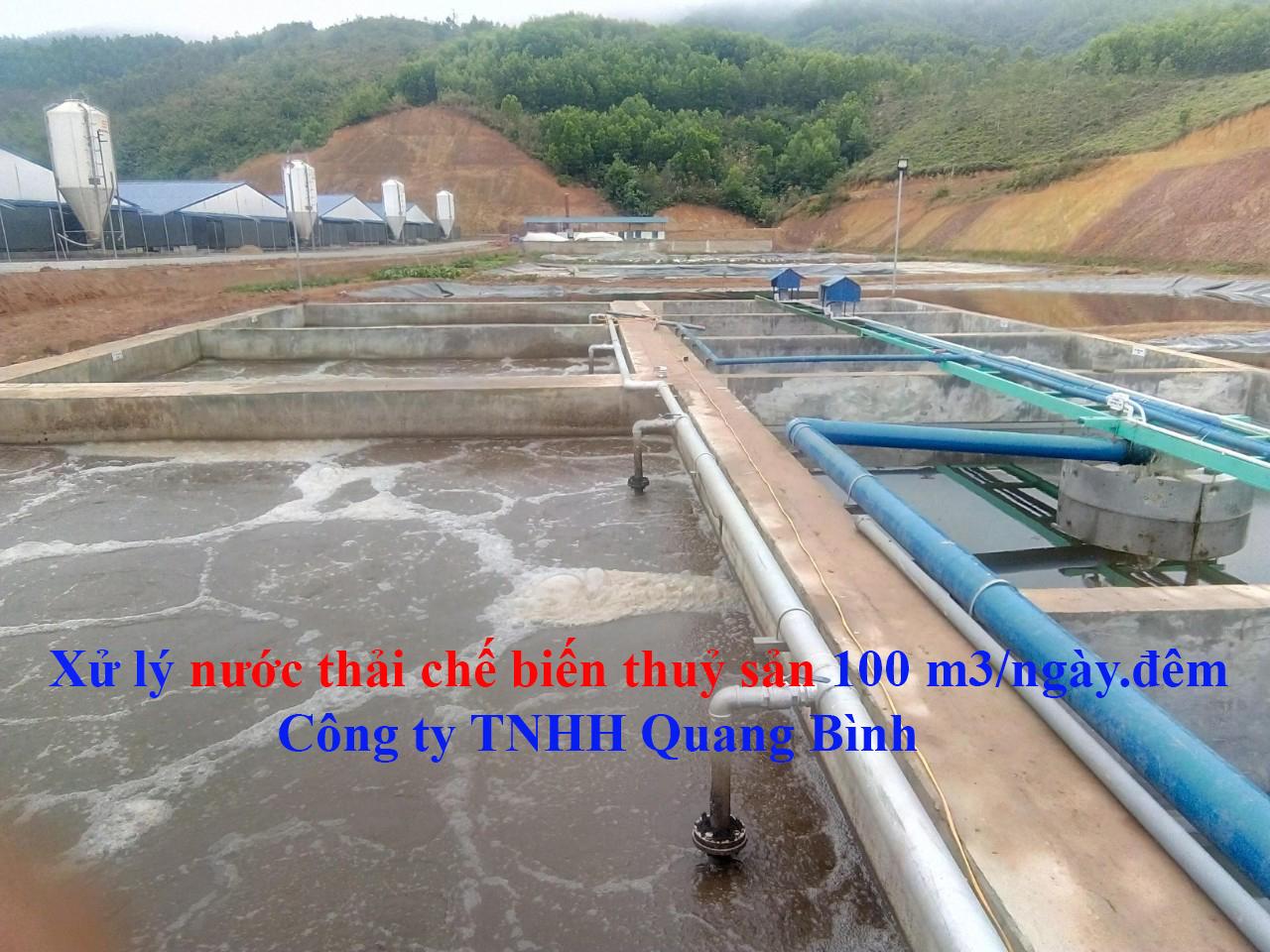 Xử lý nước thải chế biến thủy sản 100 m3 Quang Bình